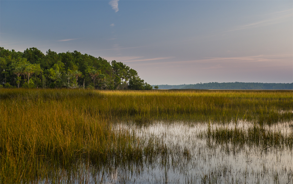 Developers plan to preserve more than half of the 9,000-acre Cainhoy property as natural space or wetlands. The remaining acreage will be used for housing, schools and commercial developments. (Photo/Provided)