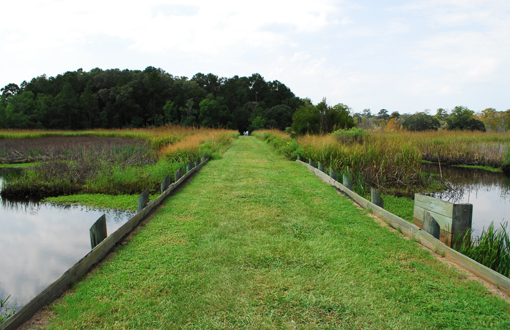 Slaves worked this system of dikes and quarter drains to control water flow to rice fields near the Laurel Hill settlement at Caw Caw Interpretive Center near Ravenel. (Photos/Andy Owens)